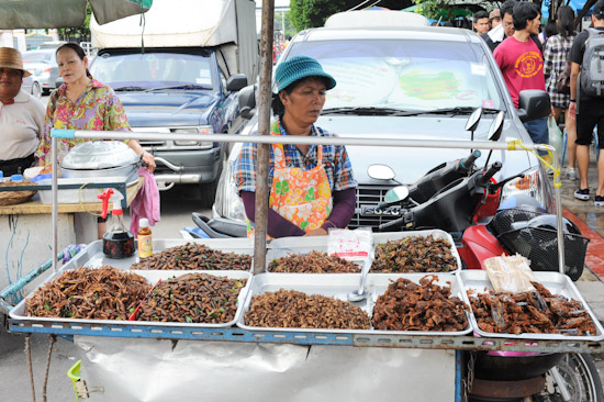 BKK Fried Insects