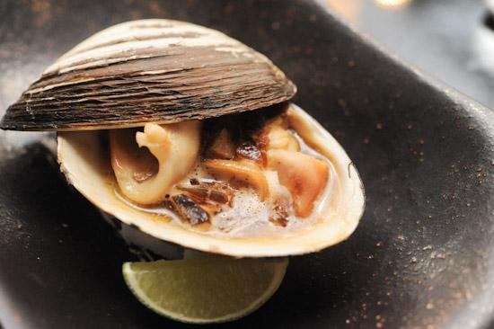 Hoki Shell