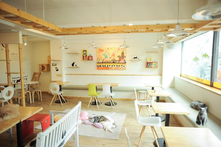 ร้านกาแฟเกาหลี ใน โซล