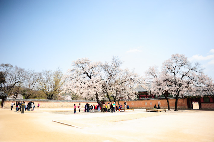 Palace in Spring