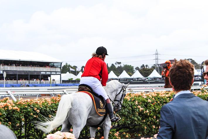 Melbourne Horse Race