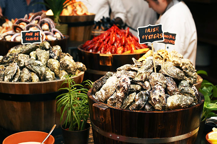 Fresh Oysters - Hilton Brunch