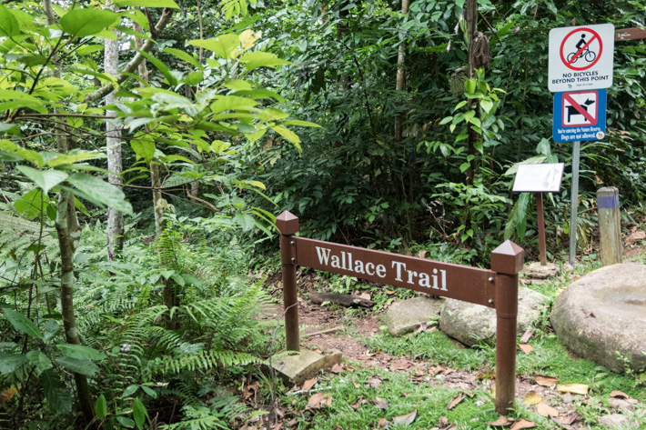Wallace Trail