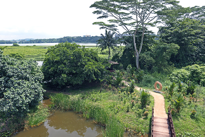 kranji marshes singapore