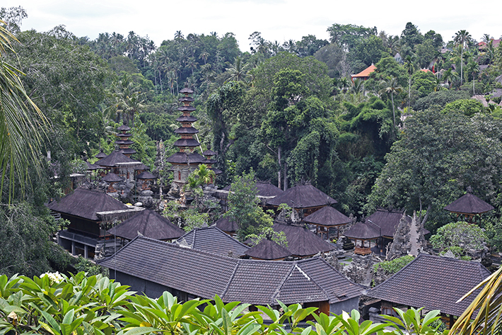 clear cafe view ubud