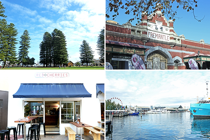 fremantle day trip
