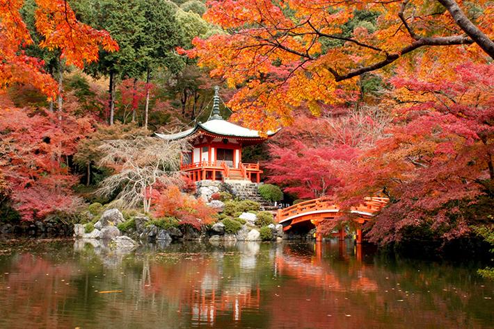 Daigo Ji Temple Kyoto