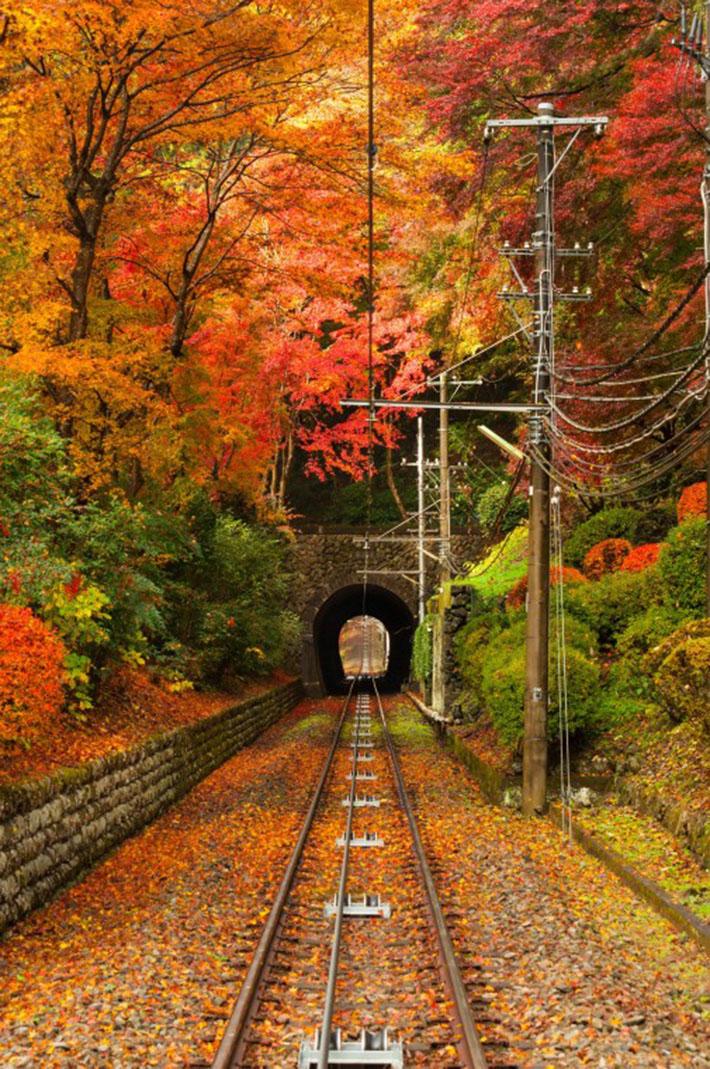Mount Takao Autumn