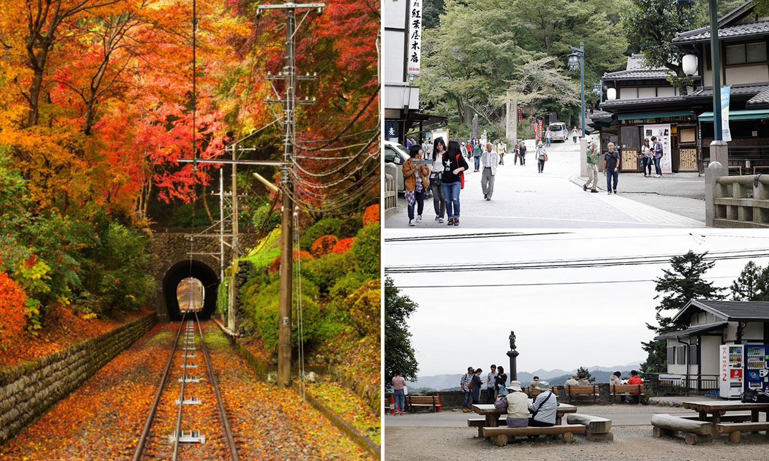 Mount Takao Cover