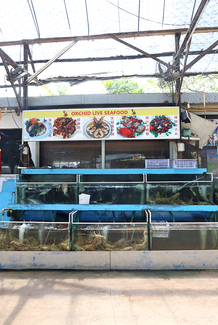 Orchid Live Seafood