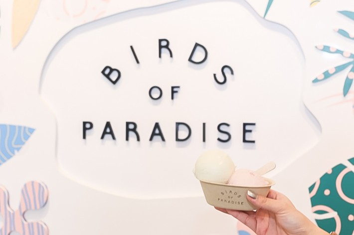 Birds of Paradise Gelato