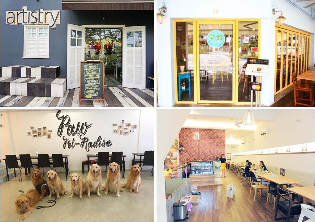 Dog friendly Places In Singapore - Magazine cover