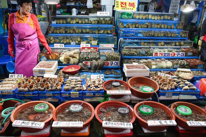 Fresh Seafood In Tanks