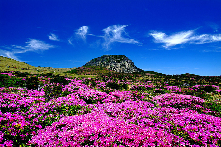 Hallasan Mountain Jeju
