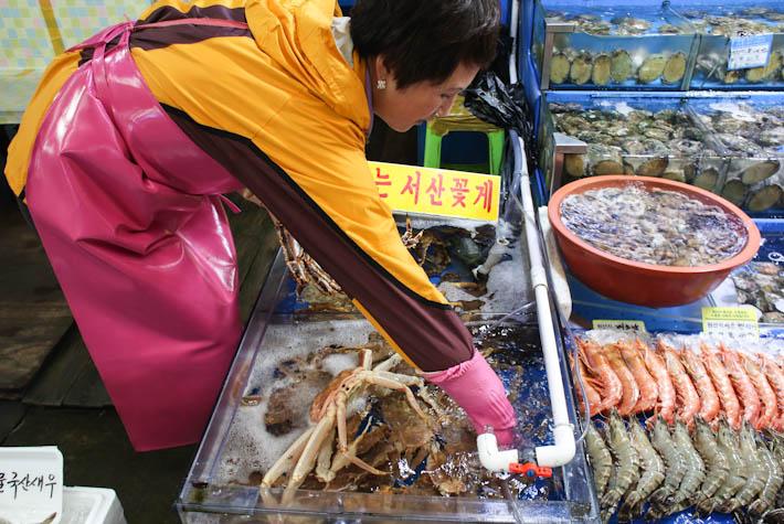 Noryangjin Fisheries Stall
