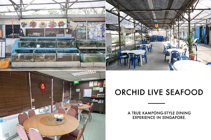 Orchid Live Seafood Kampong