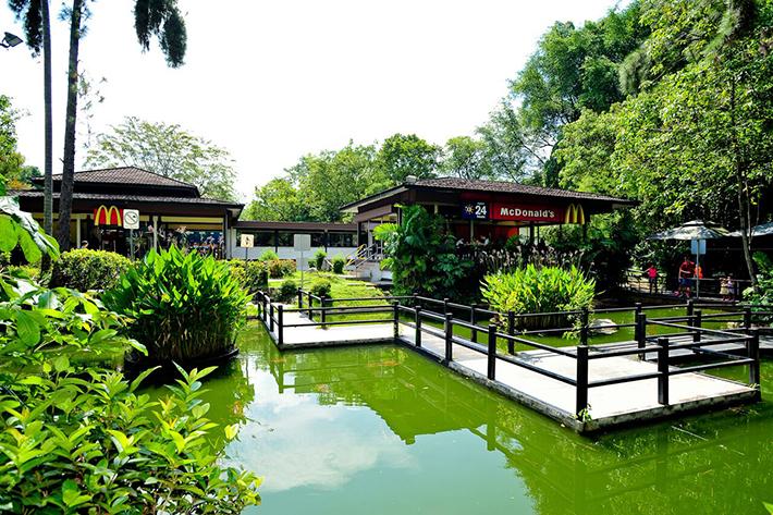 Ridout Tea Garden