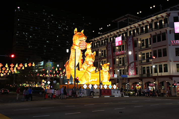 Chinatown CNY Market Dog