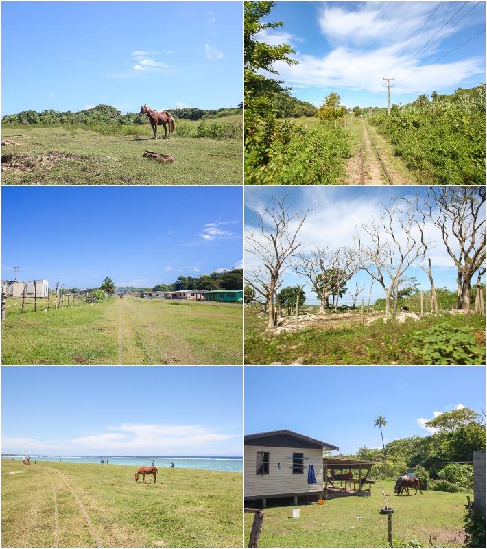 Fiji Eco Trax View Collage