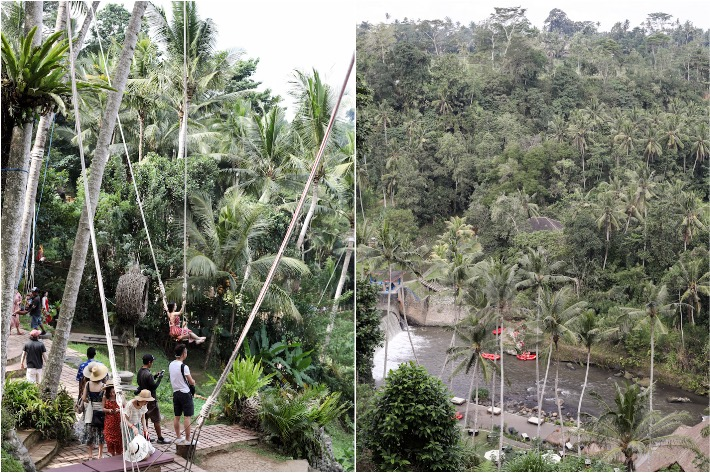 Bali Swing Collage