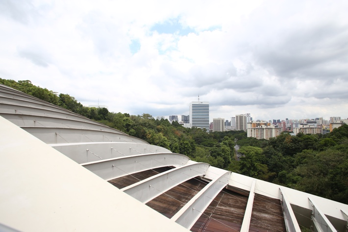 Henderson waves curve of roof view