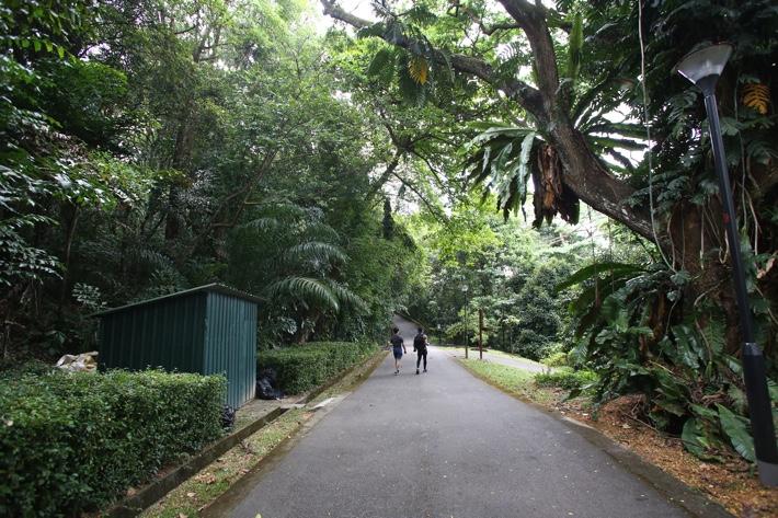 Telok Blangah Park