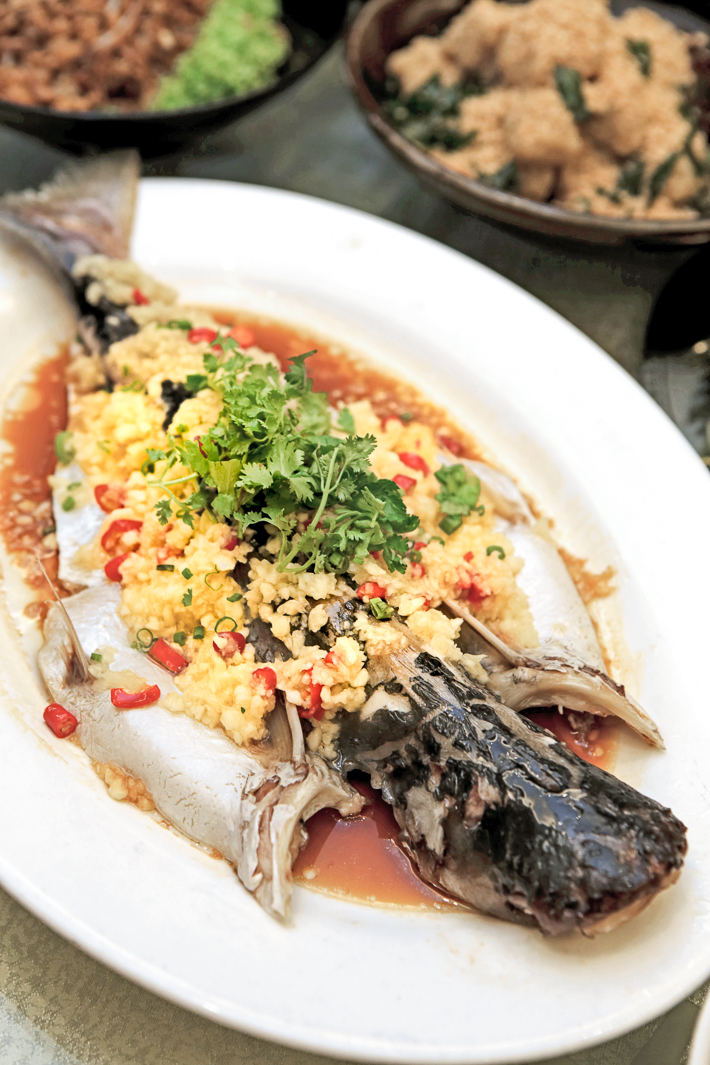 Steamed Live Pa Ting Fish with Chinese Wine and Herbs Peach Garden