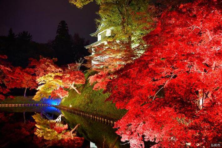 Aomori Fall Foliage