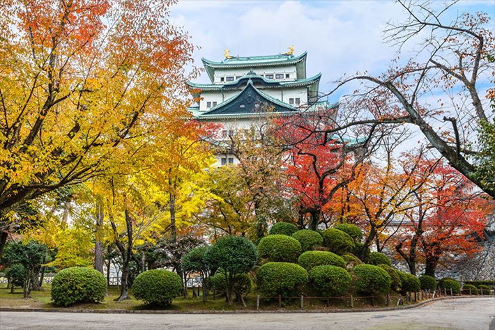 Nagoya Castle Fall Foliage