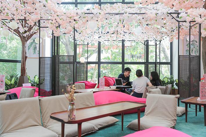 Oishii Spring