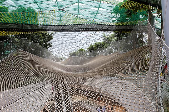 Walking Net