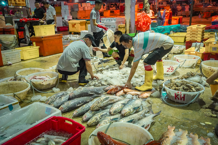 Jurong Fishery Port 1