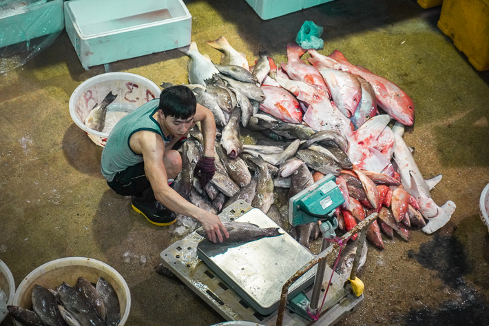 Jurong Fishery Port 2