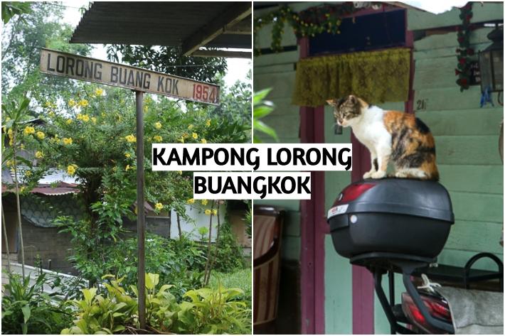 kampong lorong buangkok collage