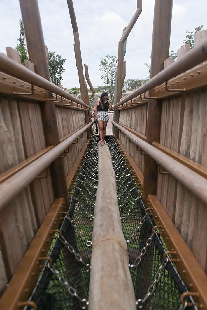 Adventure Bridge Jurong Lake Gardens