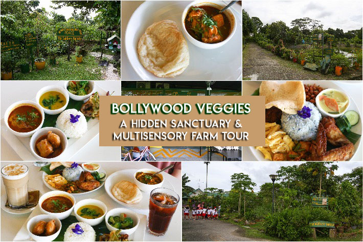 Bollywood Veggies collage