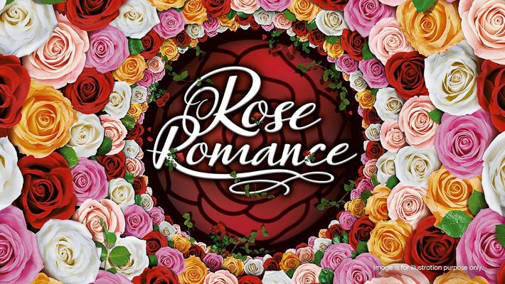 rose-romance-1670x940.jpg.renderimage.1670.940