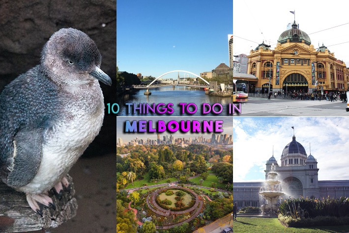 10 Things to do in Melbourne collage