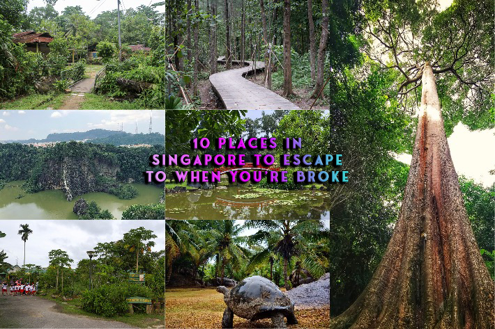 Places in Singapore to Escape to Collage