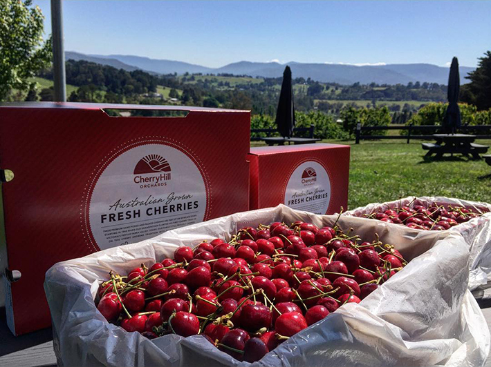 Yarra Valley Cherryhill Orchards