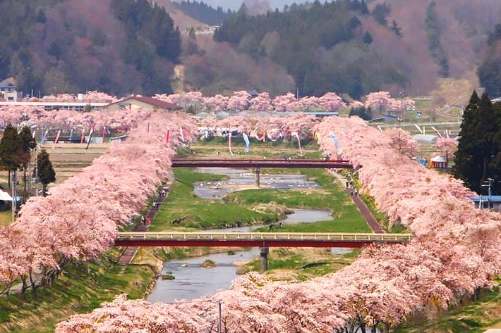 2020 Sakura Forecast Fukushima