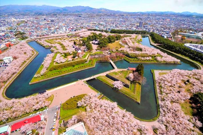 2020 Sakura Forecast Hokkaido