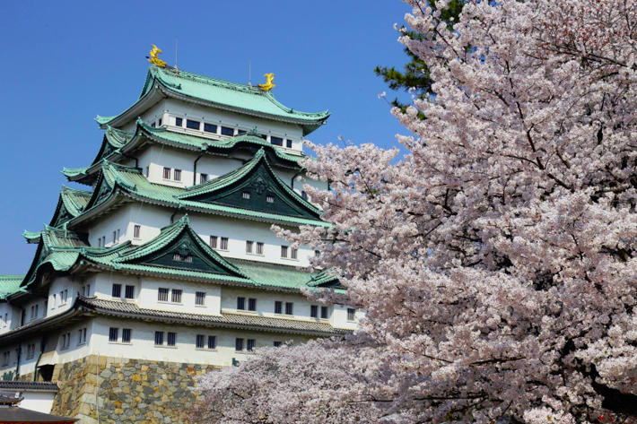 2020 Sakura Forecast Nagoya