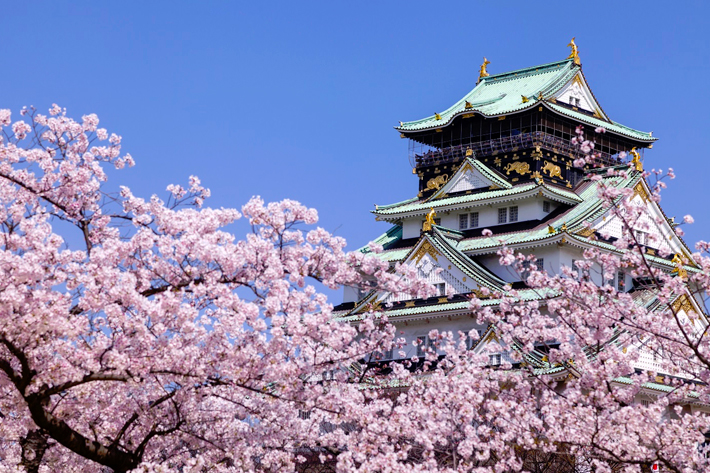 2020 Sakura Forecast Osaka
