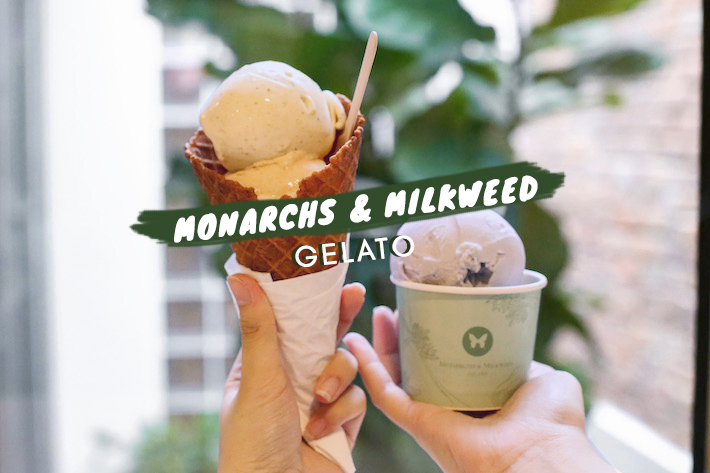 Monarchs & Milkweed Gelato Cover Photo Edited