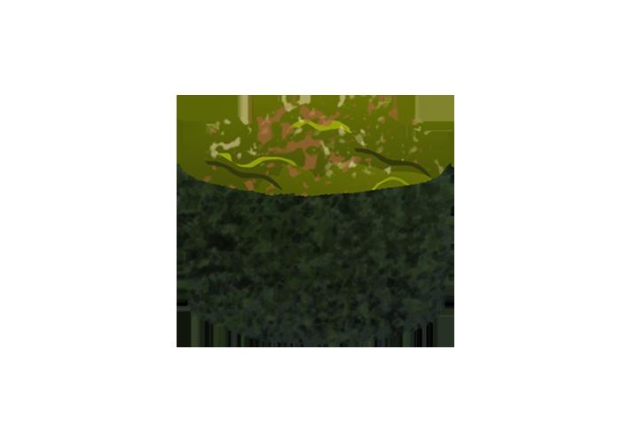 wakame gunkan