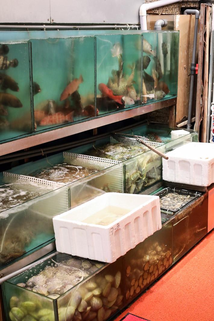 Chuk Yuen Seafood Tank