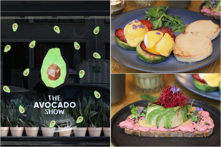 Avacado Show Collage