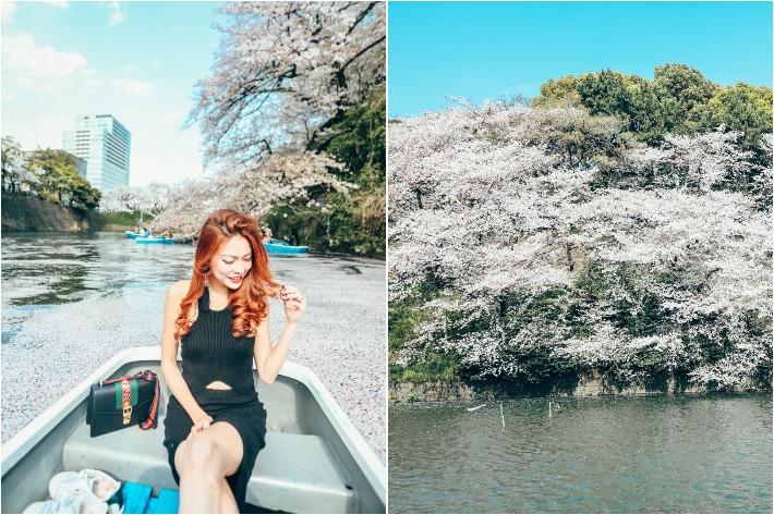 Chidoriga Fuchi Cherry Blossom